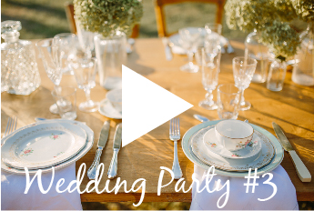 apercu-pour-video-wedding-3